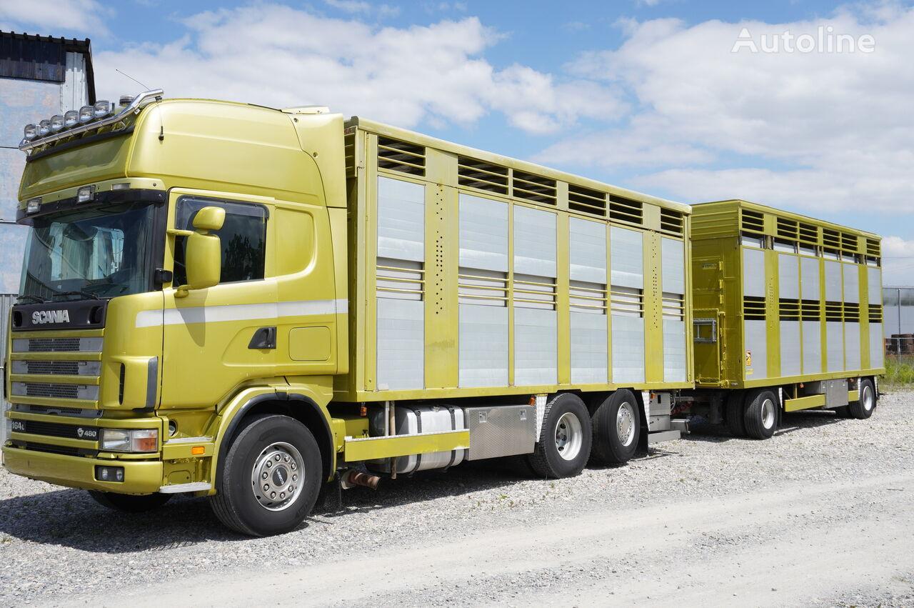 вантажівка коневоз SCANIA R164 V8, 6x2, 2 hydraulic decks, 70m2 , live stock + причіп скотовоз